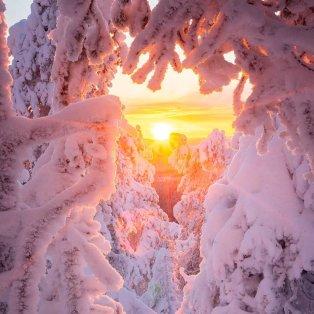 Φωτό ημέρας: Ένα μαγευτικό χειμωνιάτικο τοπίο στη Φινλανδία/ Photo: @niiloi/ instagram - Κυρίως Φωτογραφία - Gallery - Video