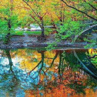 Φωτό ημέρας: Όλα τα υπέροχα χρώματα της ελληνικής φύσης στα Ζαγοροχώρια/ Photo: @vagelis_giotopoulos/ instagram - Κυρίως Φωτογραφία - Gallery - Video