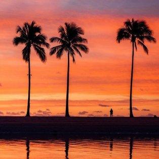 Φωτό ημέρας το ηλιοβασίλεμα και οι φοίνικες της Χαβάης - μα πόσο όμορφα χρώματα @vincelimphoto - Κυρίως Φωτογραφία - Gallery - Video