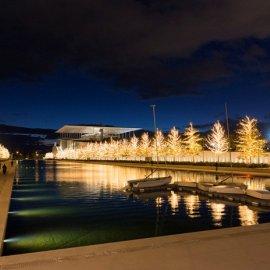 Χριστούγεννα στο Πάρκο Σταύρος Νιάρχος: Ήχοι & φως σε ένα μαγικό χειμωνιάτικο τοπίο  - Κυρίως Φωτογραφία - Gallery - Video