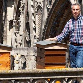 Σώθηκαν από τη φωτιά οι 200.000 μέλισσες της Παναγίας των Παρισίων (βίντεο) - Κυρίως Φωτογραφία - Gallery - Video