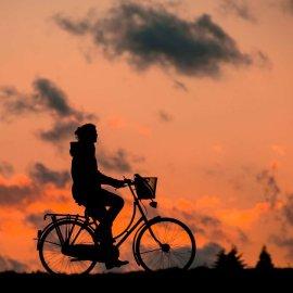 Πρέβεζα: Ένα μεγάλο μπράβο - Οι γονείς του 13χρονου ποδηλάτη δωρίζουν τα όργανα του  - Κυρίως Φωτογραφία - Gallery - Video