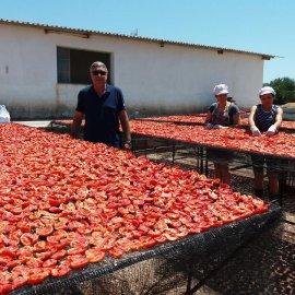 Made in Greece η «Αρκαδιά»: Ελιές, λιαστές ντομάτες, πατέ, καρδιές αγκινάρας σε βαζάκια γυρνούν τις αγορές του κόσμου... - Κυρίως Φωτογραφία - Gallery - Video