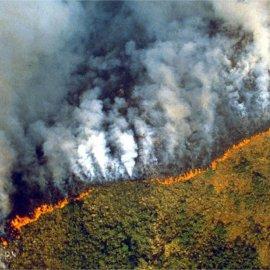#PrayforAmazonas -  Ο ουρανός δεν σκοτεινιάζει ποτέ καθώς ο Αμαζόνιος φλέγεται (φώτο-βίντεο) - Κυρίως Φωτογραφία - Gallery - Video