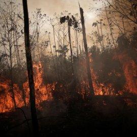 Ο αρχηγός των Ινδιάνων απευθύνει παγκόσμια έκκληση: Να ξεφορτωθούμε τον Μπολσονάρου, θέλει να καταστρέψει εμάς & το δάσος - Κυρίως Φωτογραφία - Gallery - Video