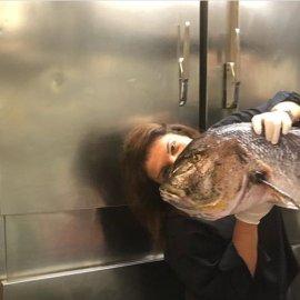 Η Αργυρώ με μία ψαρούκλα στο χέρι να! - Τι θα την κάνει άραγε; (φώτο) - Κυρίως Φωτογραφία - Gallery - Video