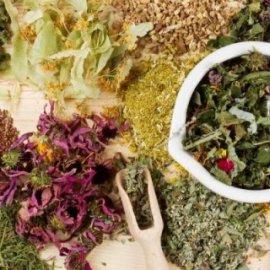 Αντιιικά βότανα - Ενίσχυση του Ανοσοποιητικού και Καταπολέμηση Λοιμώξεων! - Κυρίως Φωτογραφία - Gallery - Video