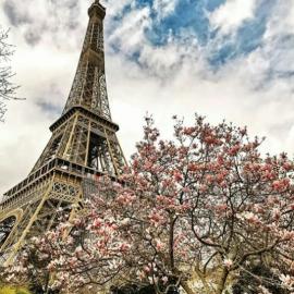 Εκκενώθηκε ο Πύργος του Άιφελ - Άνδρας απειλεί να τον ανατινάξει (φωτό) - Κυρίως Φωτογραφία - Gallery - Video