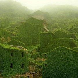 Όταν η φύση νικά τον πολιτισμό: 20 εντυπωσιακά κλις - Το χωριό που χάθηκε κάτω από τα φυτά, το πελώριο δέντρο που «κατάπιε» μια καμινάδα - Κυρίως Φωτογραφία - Gallery - Video